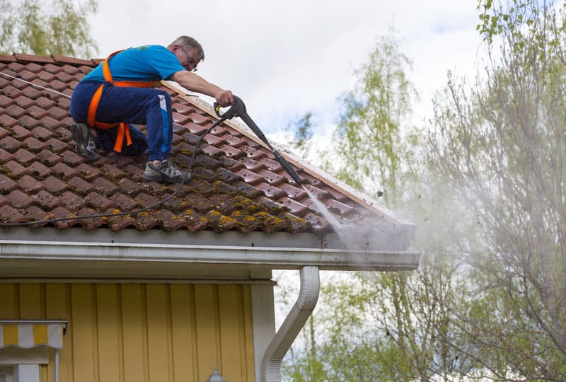 How To Roof Cleaning For Algae And Moss Central Bay Roofing