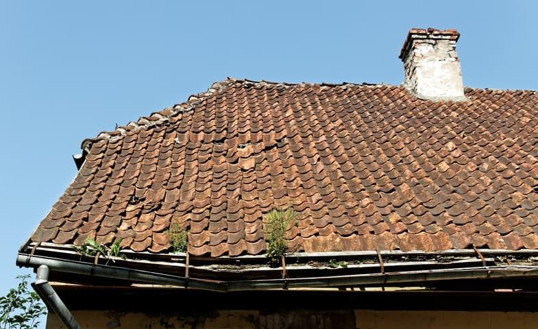 bay area roof restoration