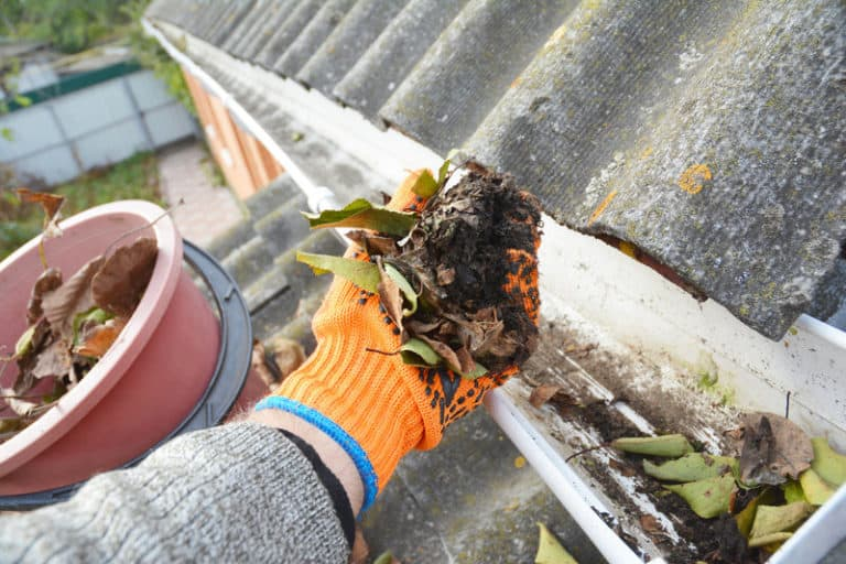 Gutter Cleaning: 5 DIY Tips to Get it Done in No Time